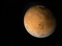 В NASA изобрели пчел-роботов для исследования Марса