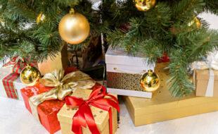 Экологичное завершение новогодних праздников: почему новогоднюю ель нужно сдать в переработку?