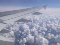 Адский полет: психологи рассказали, как избавиться от аэрофобии раз и навсегда