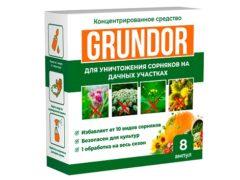 Грундор для уничтожения сорняков: воздействует на 10 известных видов сорняков