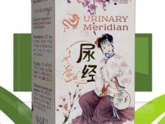 Urinary Meridian